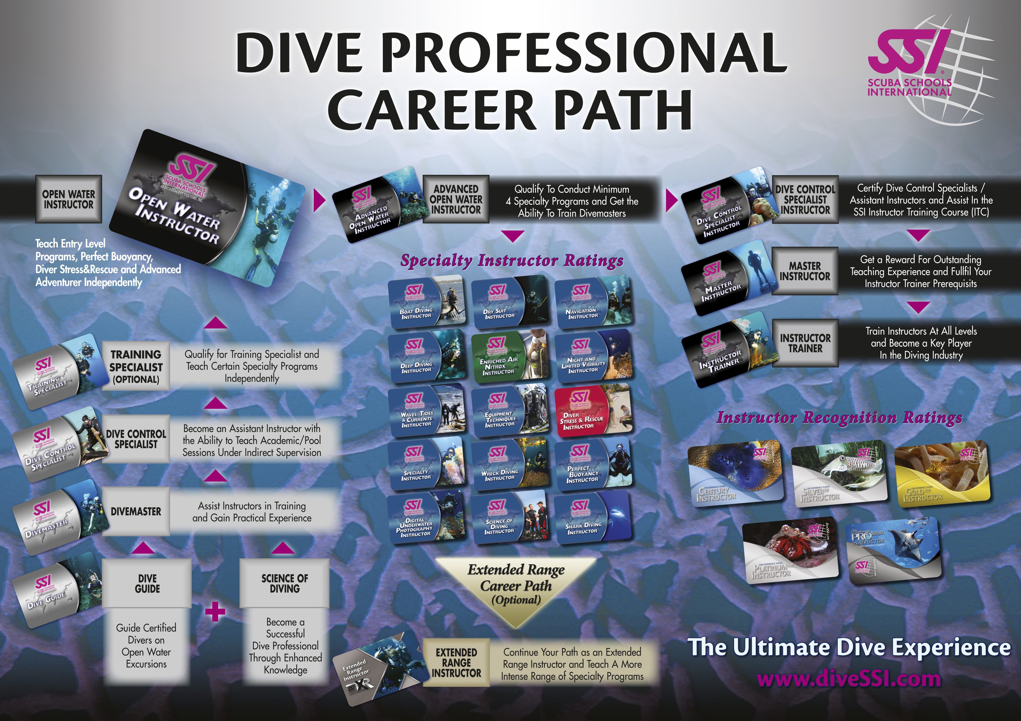 New photograph of diver certification business cards and resume fishermen scuba studio your premier ssi dive center in singapore xflitez Gallery